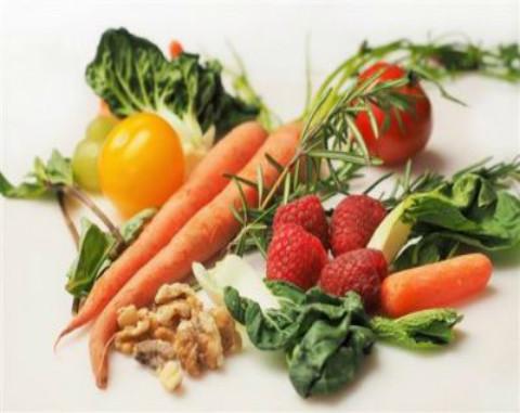 Plants vegetables